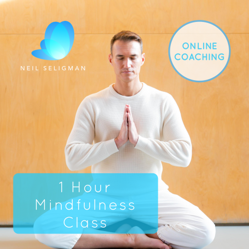 1 Hour Mindfulness Class with Neil Seligman