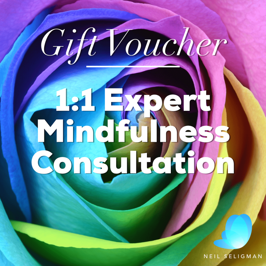 Expert Mindfulness Consultation