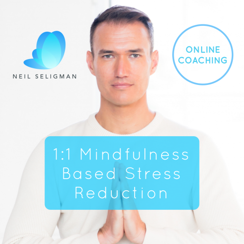 Online Mindfulness Based Stress Reduction Course with Neil Seligman
