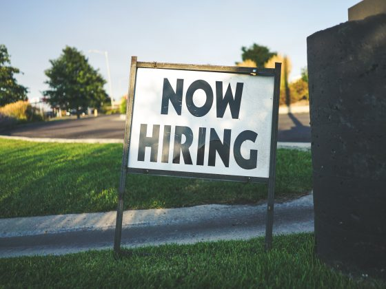 Mindful Job Searching